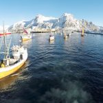Trawler in Norway, Atlantic goes International